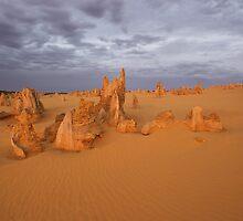Pinnacles at dusk. by Peter Hodgson