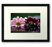 Pink and red Framed Print