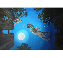 Creatures of the Night Photographic Print