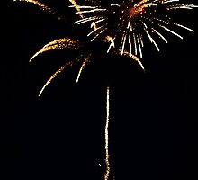 Firework Flower by Sophie Lapsley