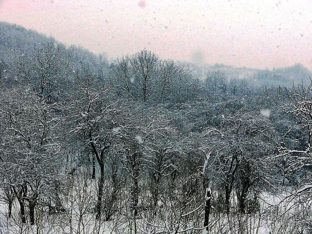 winter story 1 by cristina