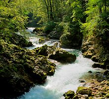 The Vintgar gorge, Gorje, near Bled, Slovenia by Ian Middleton