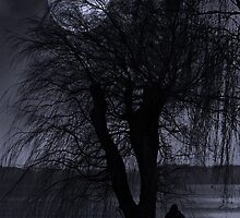 Moonwalk by Christian Hartmann