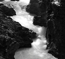 The Vintgar gorge, Gorje, near Bled, Slovenia by Ian Middleton