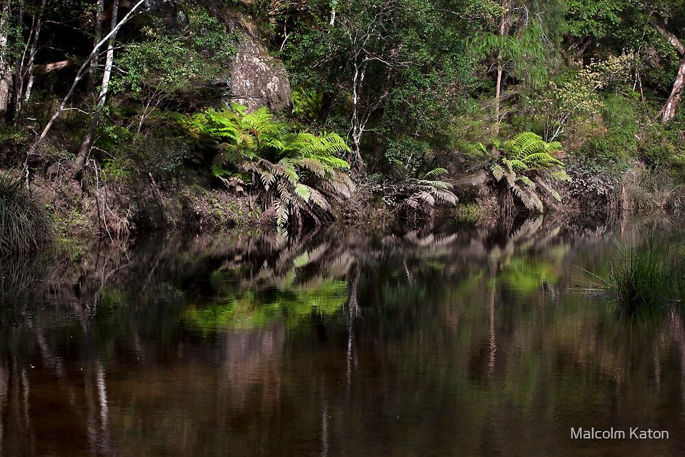 Surprise Location by Malcolm Katon