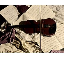 The resting Violin. Photographic Print