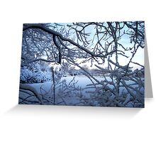 Cusp Cuspschen's 'snowy branches' Greeting Card