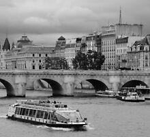 Paris, Pont Neuf by hatuey