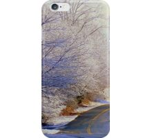 Winter Whirl  ^ iPhone Case/Skin