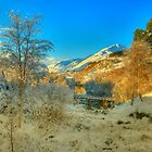 Glen Affric by donnnnnny