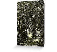 Botanic Trail Greeting Card
