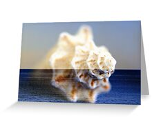 shEll oF St. croiX Greeting Card