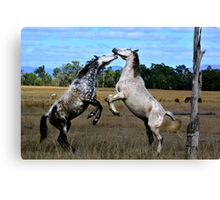 STATION HORSES Canvas Print