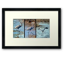 STEP BY STEP AND AWAY Framed Print