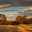 Golden Hour, Burra Gorge by Blue Gum Pictures