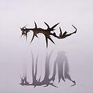 Monster I by Igor Mazulev