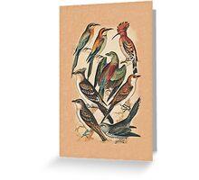 Birds Greeting Card