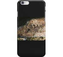 History Set in Stone iPhone Case/Skin