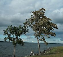 Strength at the Saint Lawrence River  by linmarie