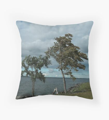 Strength at the Saint Lawrence River  Throw Pillow