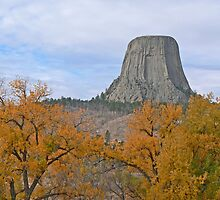 Devil's Tower by Graeme  Hyde