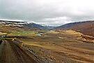 Highlands, Iceland by Margaret  Hyde