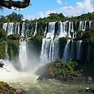 Iguazu Falls - Argentina by naturalnomad
