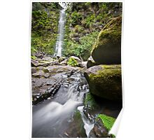 mossy boulders and erskine falls Poster