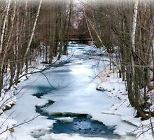 Winter Stream in Alton by Monica M. Scanlan
