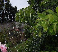Garden by wyvernsrose