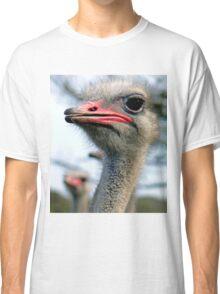 """""""Do I need more lippy?"""" Classic T-Shirt"""
