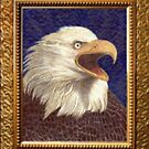 American Eagle by Jerry  Stith