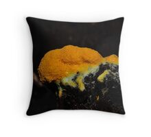 Dogs vomit slime mould Throw Pillow