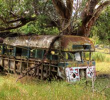 Old Bus, Ingebyra, Snowy Mountains - NSW by Steve Fox