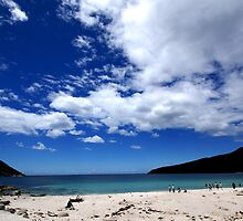 Wine Glass Bay I - Freycinet National Park, Tasmania by Nathan Lam