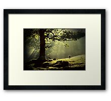 Early Morning Borrowdale In The English Lakedistrict Framed Print