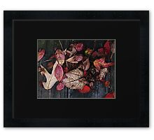 Collage Of Autumn Red Framed Print