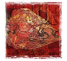 The Atlas Of Dreams - Color Plate 77 Photographic Print