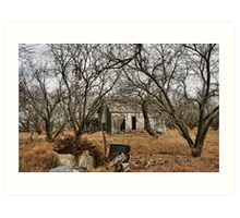 Deserted Farm House in Comanche County, Texas Art Print