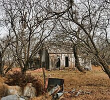 Deserted Farm House in Comanche County, Texas by Susan Russell