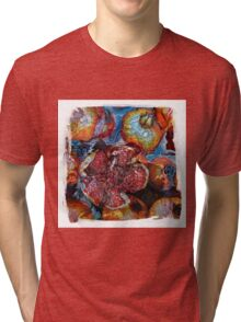 The Atlas Of Dreams - Color Plate 81 Tri-blend T-Shirt