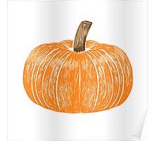 Plain painted pumpkin Poster