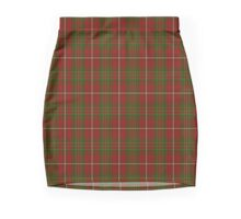 00095 Hay Clan/Family Tartan  Mini Skirt