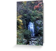 Meigs Fall III  Greeting Card