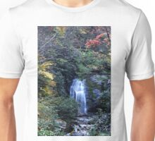 Meigs Fall III  T-Shirt