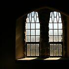 Woodbury Windows by coffeebean