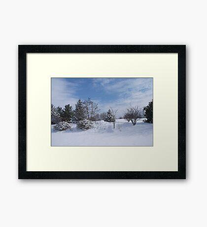 looking for snowmen Framed Print