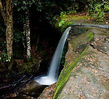 somersby lower falls. by Tim Richardson