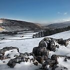 Littondale From Halton Gill by SteveMG