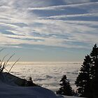 At the top of the Mountains, the Clouds Hide the Edge of the World by Corri Gryting Gutzman